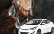 Removing tree sap from the car - the best home remedies and tips